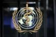 Mỹ gia tăng áp lực, hối thúc WHO nhanh chóng điều tra nguồn gốc dịch COVID-19