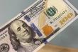 Tỷ giá USD hôm nay 19/11: USD tiếp tục giảm, tương lai u ám